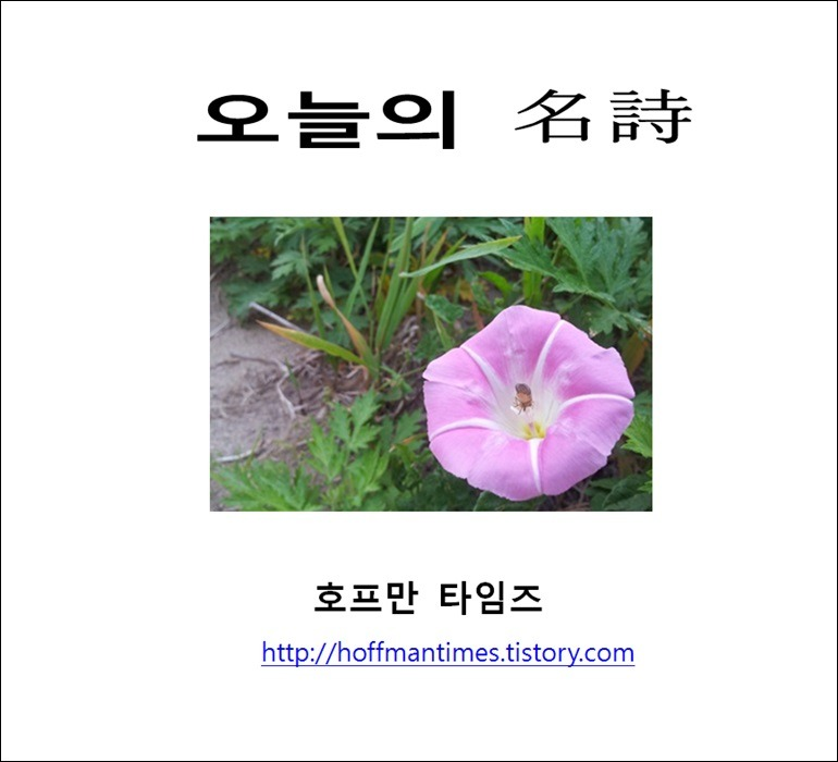 오세영의 '울릉도'(鬱陵島) 외-울릉도에 관한 시 모음
