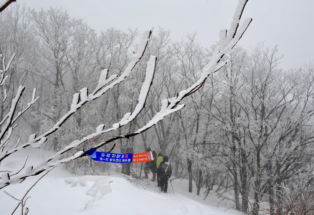 2012년2월 고루포기산