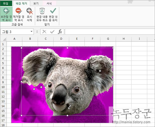 엑셀 Excel 그림, 이미지 배경 제거하는 방법