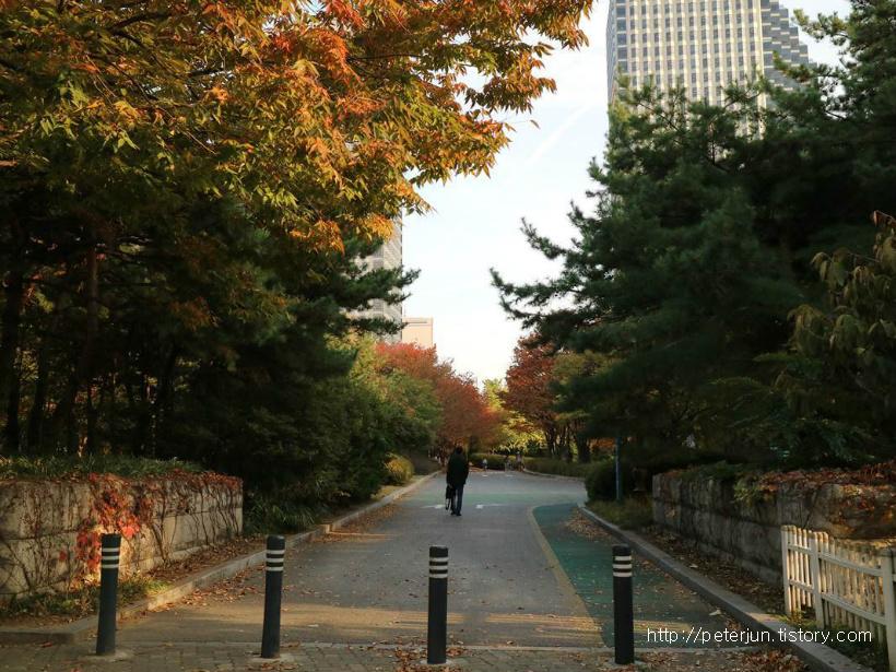 가을 여의도공원