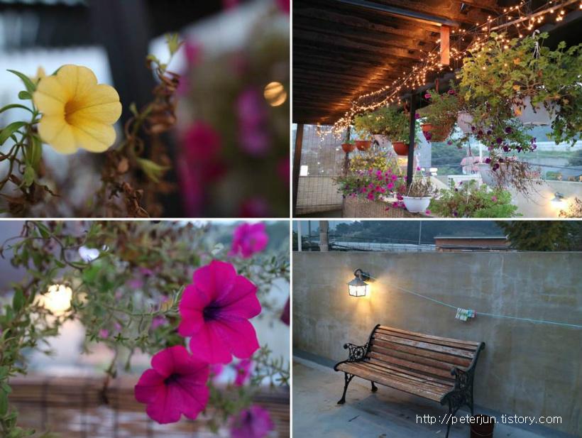 카페 풍경, 예쁜 꽃들, 그리고 벤치